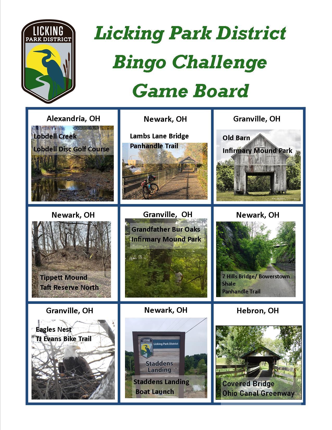 Bingo Challenge game board